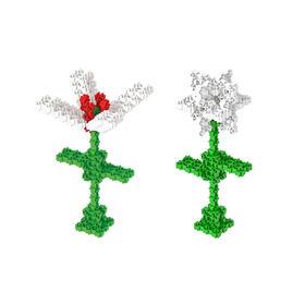 amewi-2-in-1-fanclastic-set-blumen-flowers-f1111