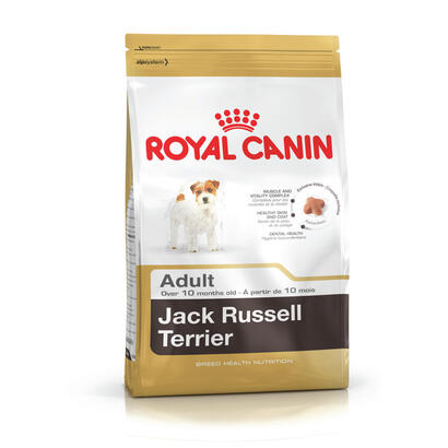 royal-canin-jack-russell-adult-adulto-aves-arroz-15-kg
