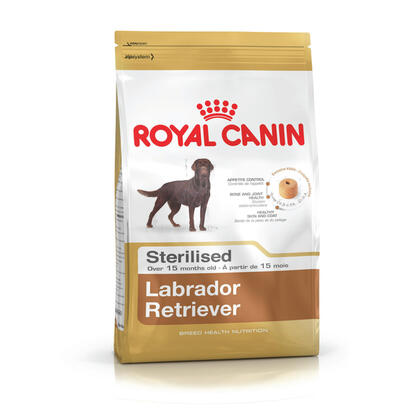 pienso-royal-canin-shn-breed-labrador-ster-ad-12-kg-