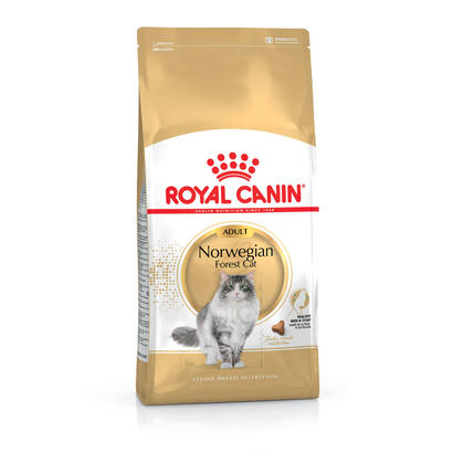 royal-canin-norwegian-forest-cat-adult-alimento-seco-para-gatos-adulto-aves-10-kg