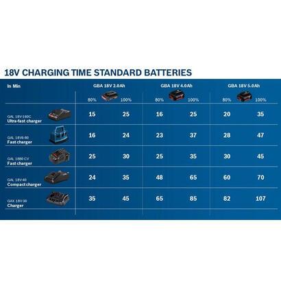 bosch-1-600-z00-036-cargador-y-bateria-cargable