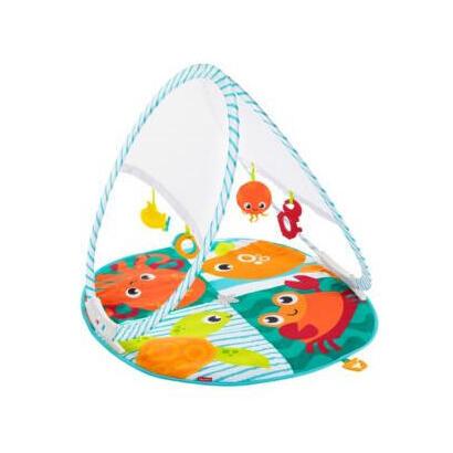 fisher-price-fxc15-gimnasio-para-bebe-y-tapete-de-juego-manta-de-juegos-para-bebes-multicolor
