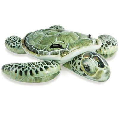 tortuga-hinchable-191x170