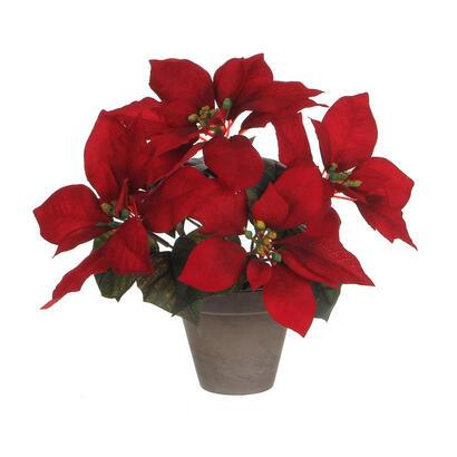 planta-ponsettia-roja-en-maceta-gris-27x35cm