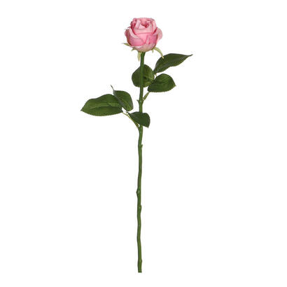rosa-rosa-45cm
