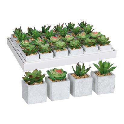 suculenta-verde-en-maceta-modelos-surtidos-8x5cm