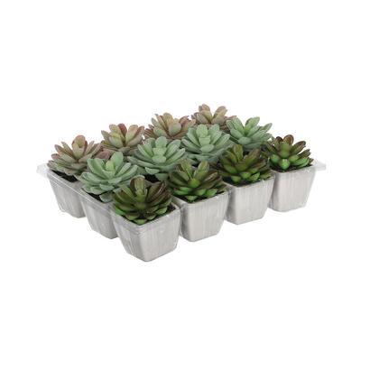 cactus-en-maceta-modelos-surtidos-85cm