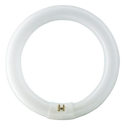 tubo-fluorescente-circular-32w-trifosforo-840k-philips-o-30cm