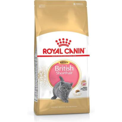 pienso-royal-canin-kitten-british-10-kg-
