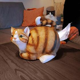 cat-tissue-holder-04636