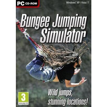 bungee-simulator