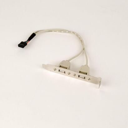 iggual-bracket-2-puertos-usb-20-025m