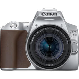 canon-250d-24mp-wifi-plata-objetivo-ef-s-18-55mm-f4-56-is-stm