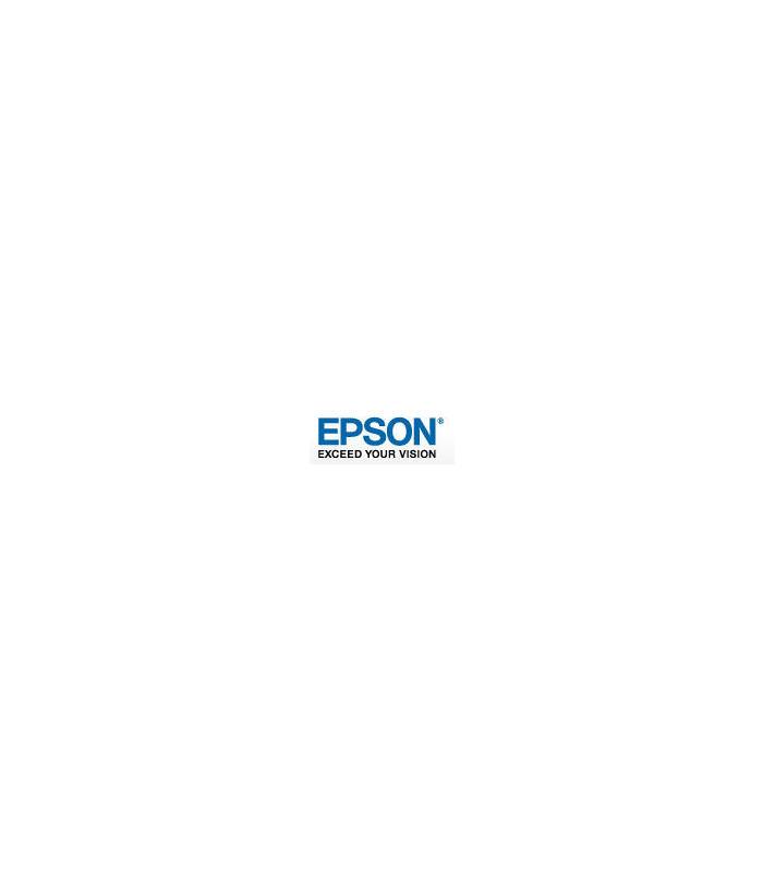 epson-medium-cabinet-for-wf-c5xxxm5x99c529rc579r-series