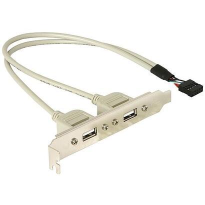 delock-slot-bracket-2xusb-20-cable-030m